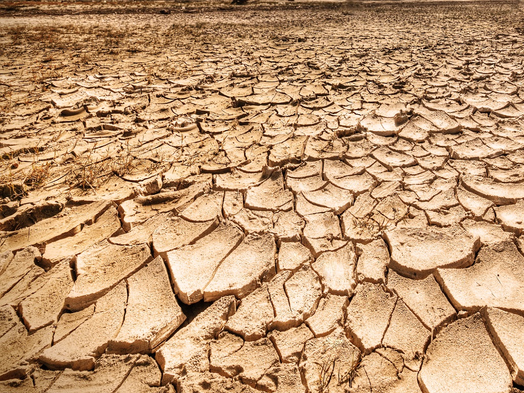 Drought Conditions in Most of Southern Pakistan Worsen